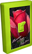 Forever & Ever, Truly Yours Valentine Tulip 6 LED Night Light Wall Switch Item 110580VALENTINE